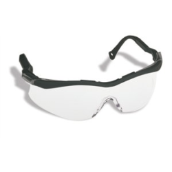 Lunette the Edge Claire (T56005B) NORTH HONEYWELL